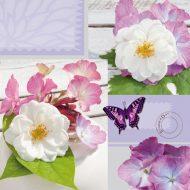 Bright Summer Lilac