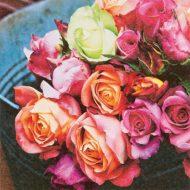 Les Roses sur March