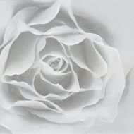 Rose Silver