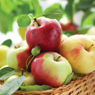 Sunny Apples
