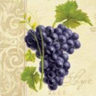 Winery back side