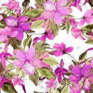 Flowering Clemantis Pink