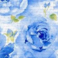 Rosa Delicada Blue
