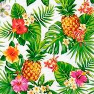 Tropical Flowers