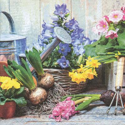 Jardinage en Printemps